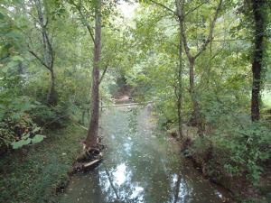 Creek at front of property