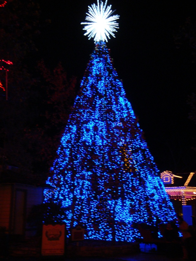 5-story tree on Main Street. Here it is blue, it was also red, gold, and green.