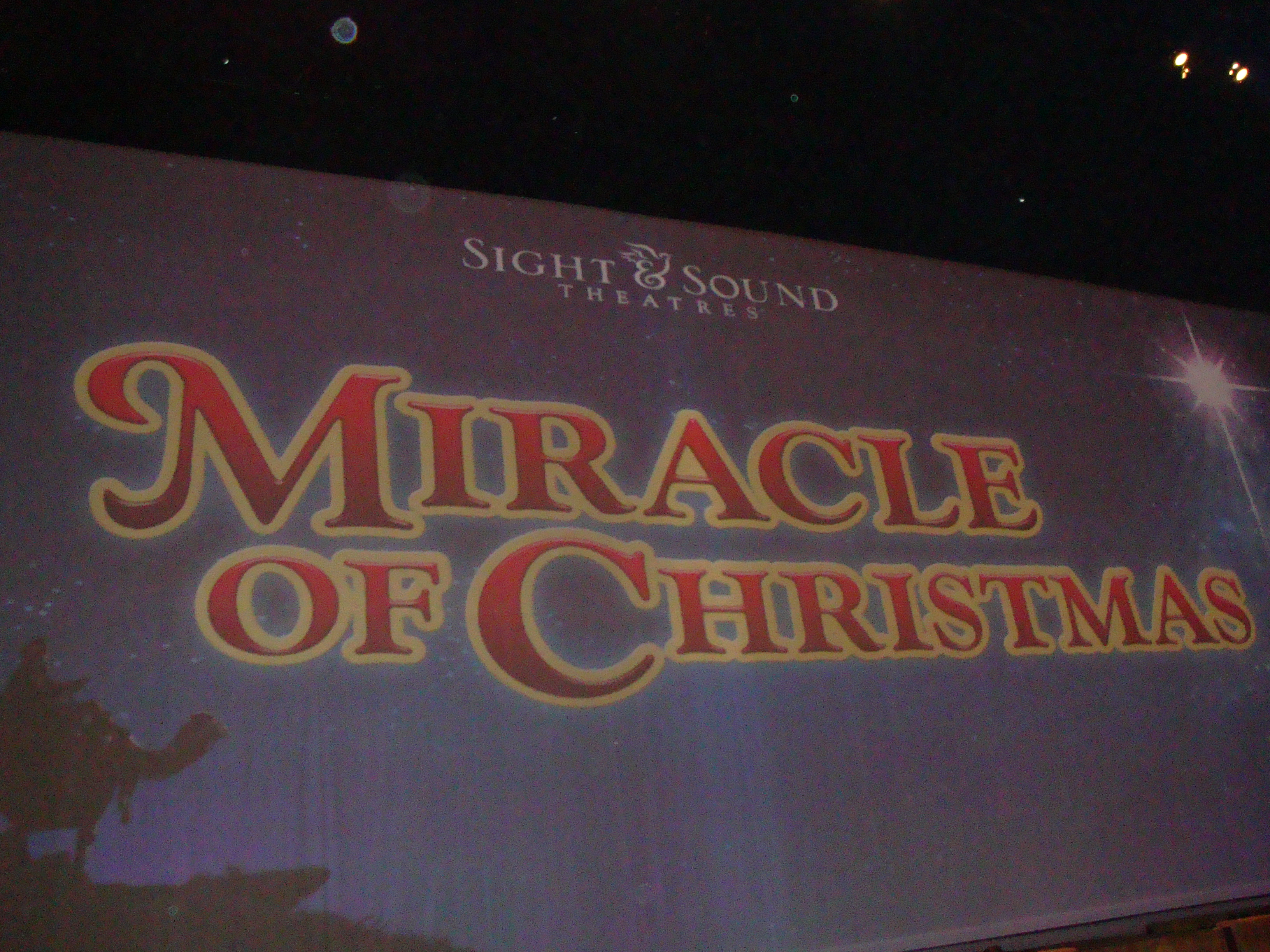 we were then whisked off to see the miracle of christmas show at the sight and sound theater what a show