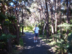 Trail from the visitor's center to Volcano House