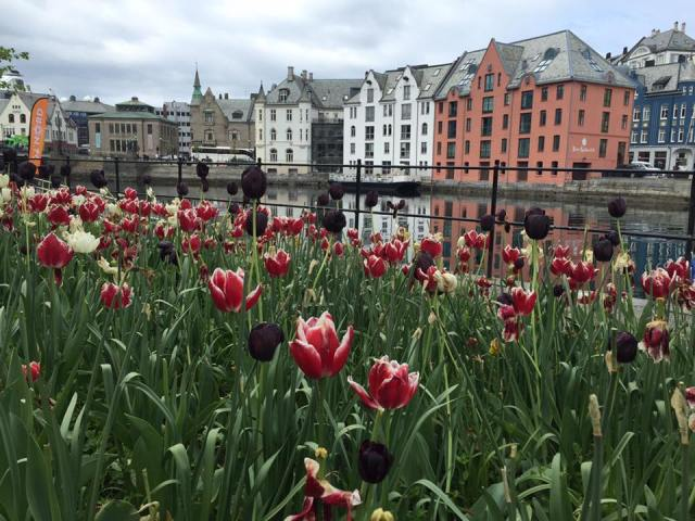 Vilma's beautiful view of Alesund, Norway